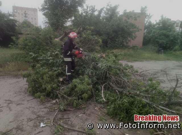 У Кропивницькому на проїжджу частину вулиць Київської і Пашутінської впали дерева