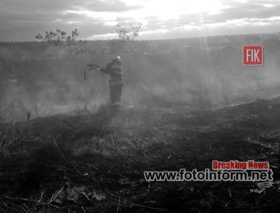Кіровоградщина, у екосистемі, загасили дві пожежі,