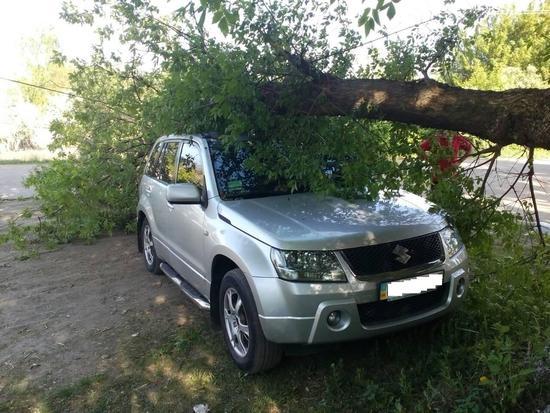 рятувальники вивільнили легковий автомобіль з-під розчахнутого дерева