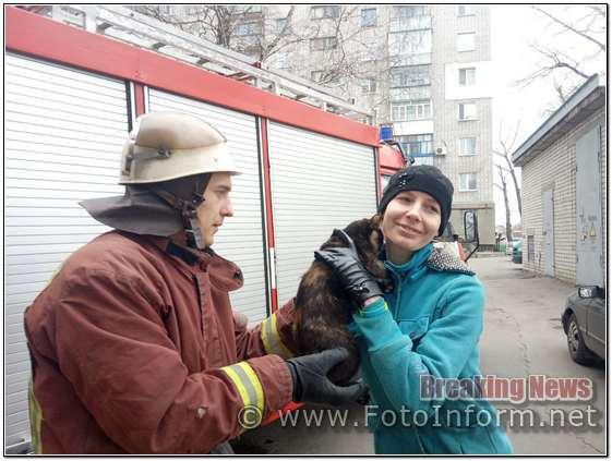 22 березня працівниками 17-ї Державної пожежно-рятувальної частини було врятовано котика.