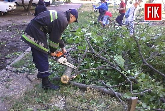 14 серпня об 15:10 до Служби порятунку «101» надійшло повідомлення про те, що по вул.Пацаєва у дворі впала частина дерева.