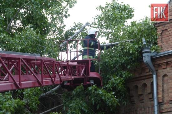 8 травня о 18:39 до Служби порятунку «101» надійшло повідомлення про те, що на вулиці Гоголя в обласному центрі на житловий будинок впало дерево.