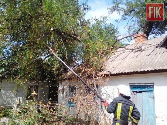 На Кіровоградщині рятувальники двічі виїжджали, щоб прибрати аварійні дерева