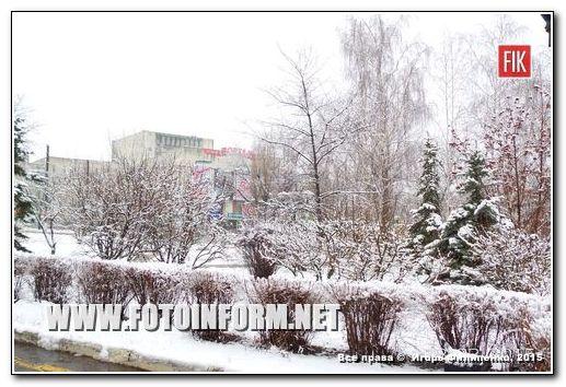 Зимняя сказка в Кировограде (ФОТО)