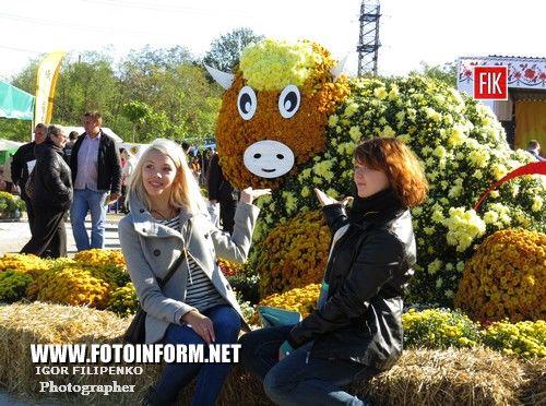 Кировоград: Покровская ярмарка в фотографиях