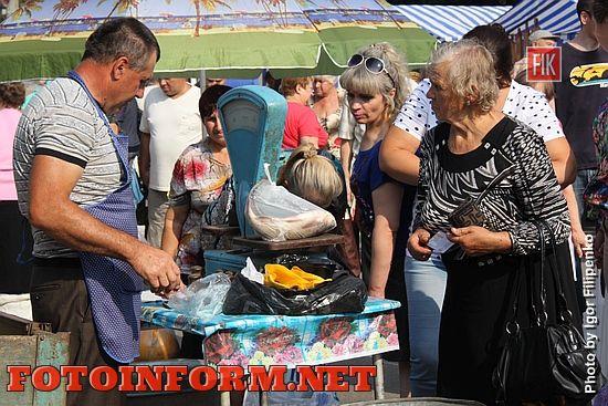 Кропивницкий: в центре города состоялась предпраздничная ярмарка (фоторепортаж)