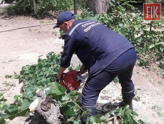 На Кіровоградщині рятувальники тричі надавали допомогу по розпилюванню аварійних дерев