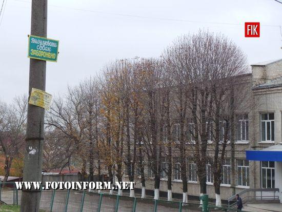 У Кропивницькому процвітає незаконна реклама на стовпах (ФОТОРЕПОРТАЖ)