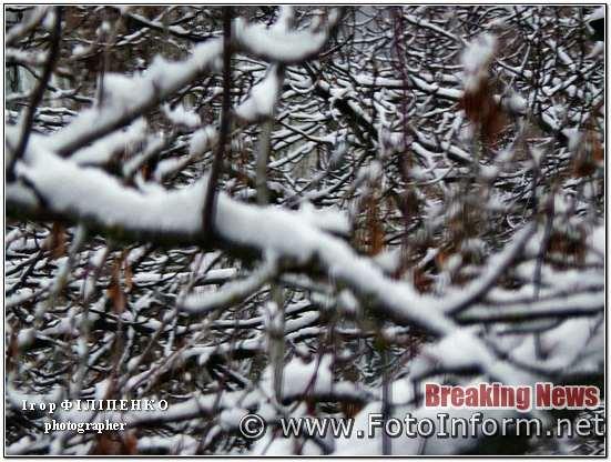 У Кропивницькому випав перший сніг, фото игоря филипенко