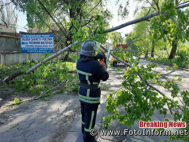 Минулої доби рятувальники 17-ї ДПРЧ м. Світловодськ та 1-го ДПРЗ м. Кропивницький виїздили для надання допомоги по усуненню перешкод, що створювали для життєдіяльності населення аварійні дерева.