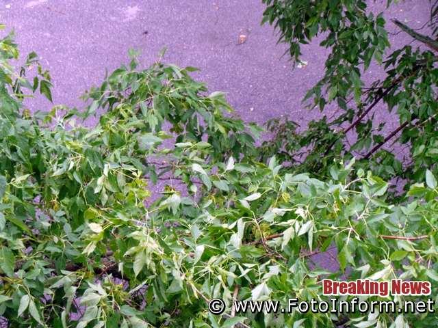 Кропивницький: буревій, шквальний вітер, град нанесли шкоду містянам