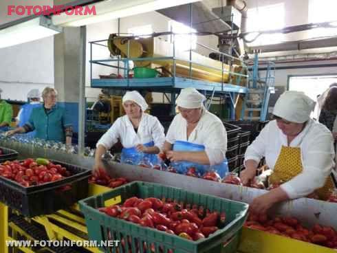 Сергій Ларін оглянув потужності виробництва місцевого консервного заводу ТОВ Плюс (фото)