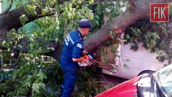 9 серпня о 15:44 до Служби порятунку «101» надійшло повідомлення про те, що в смт Добровеличківці впало дерево на автомобіль «Volkswagen».
