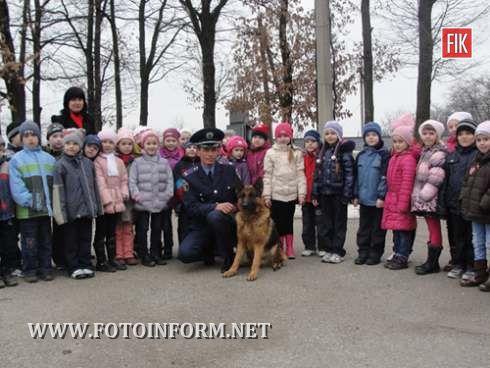 Кіровоград: малятам дозволили потримати у руках маленьких цуценят (фото)