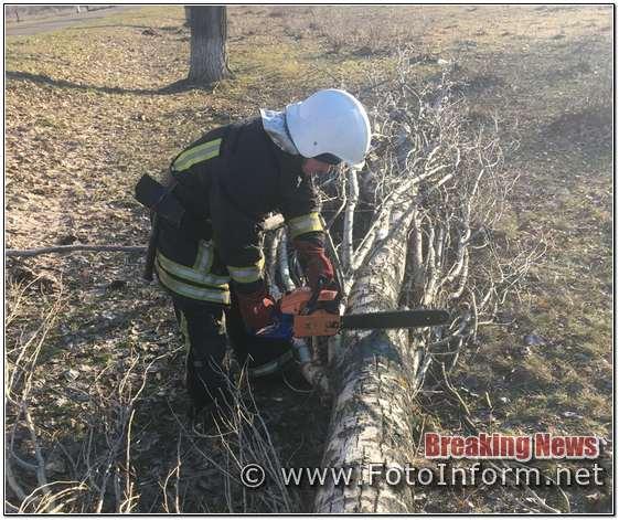 Кіровоградщина, надавали допомогу, по прибиранню аварійних дерев