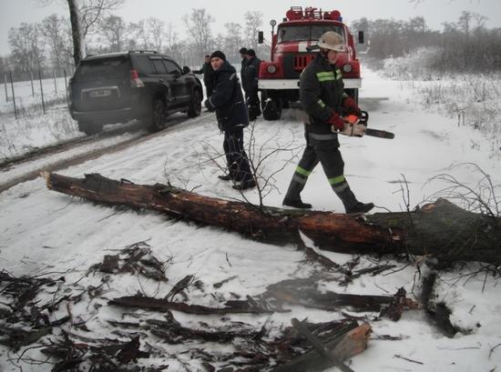 Минулої доби рятувальники Кіровоградської області тричі виїздили для надання допомоги по розпилюванню та прибиранню повалених дерев.