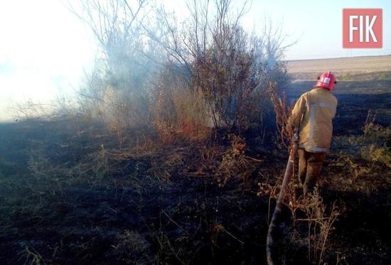 За минулу добу, 1 травня, рятувальники області 4 рази виїжджали на гасіння пожеж у природних екосистемах.