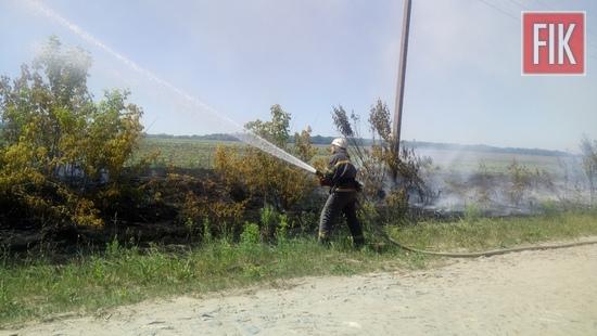 Минула доба відзначилась п'ятьма випадками пожеж сміття та рослинності на відкритих територіях Кіровоградської області.