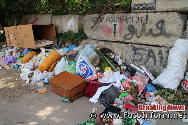 Кропивничани зробили біля дороги звалище сміття