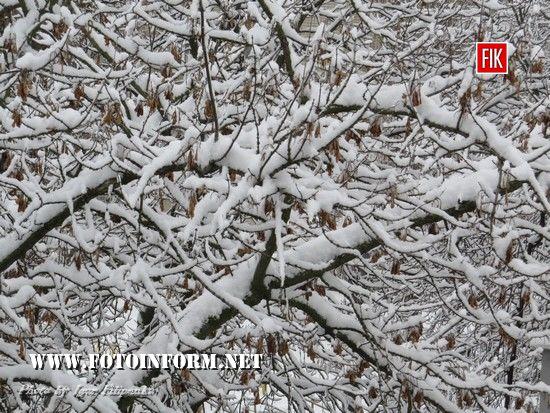 невеликий фоторепортаж зимовою погоди у Кропивницькому