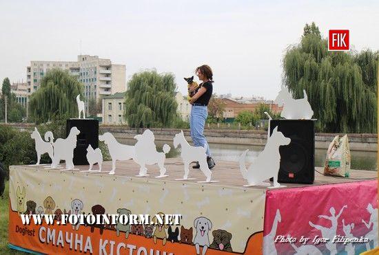 Сьогодні, на День міста у Молодіжному сквері на набережній річки Інгул, відбулося свято «Смачна кісточка».