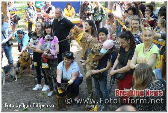 Кропивницький, «Кубок Барбоса-2019» у фотографіях, фото филипенко