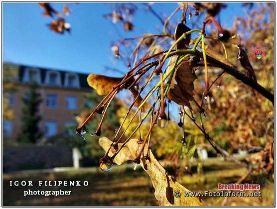 Кропивницький, чарівність осені у фотографіях, фото филипенко