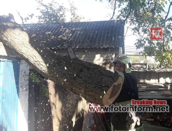 Кіровоградщина, двічі надавали допомогу, по розпилюванню аварійних дерев