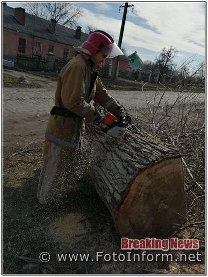 За добу, на Кіровоградщині, бійці ДСНС, прибрали два аварійних дерева