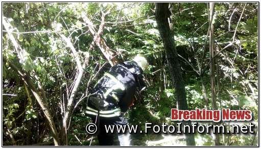7 червня рятувальники 1-го Державного пожежно-рятувального загону м. Кропивницький розпиляли та прибрали аварійні дерева, що загрожували падінням на проїжджу частину на автодорозі Кропивницький – Аджамка.