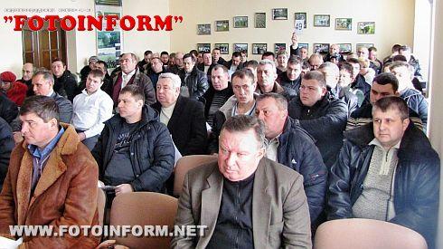 На Кіровоградщині відбувся аукціон з продажу необробленої деревини (ФОТО)