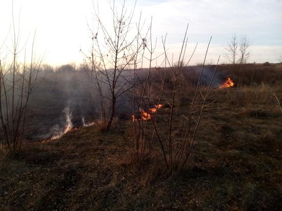 Протягом 6 квітня пожежно-рятувальні підрозділи Кіровоградської області загасили 3 пожежі сухої минулорічної рослинності.