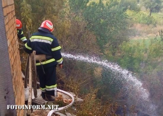 На Кіровоградщині рятувальники 4 рази виїздили на гасіння пожеж (ФОТО)