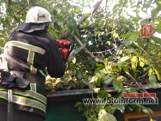 Кіровоградська область: внаслідок негоди рятувальники прибирали повалені дерева – новини fotoinform.net