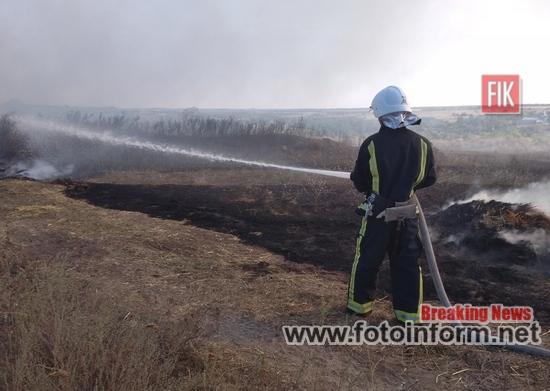 На Кіровоградщині вогнеборці ліквідували 12 пожеж у екосистемі області