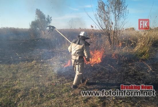 Кіровоградщина, 6 пожеж сміття, сухої трави, очерету, кропивницький, фотоинформ