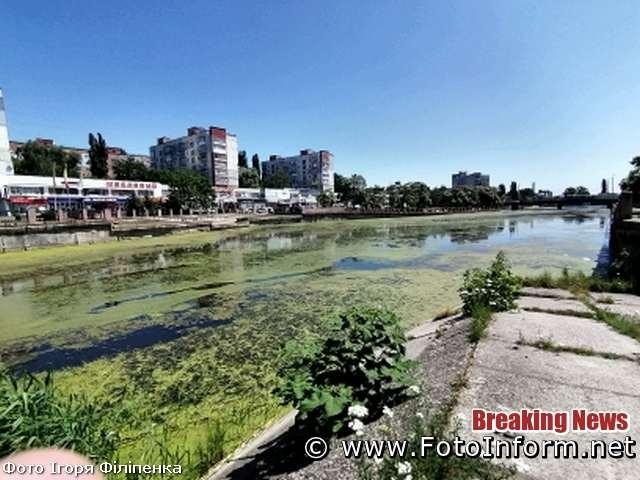 У Кропивницькому із-за спеки цвіте Інгул (ФОТО)