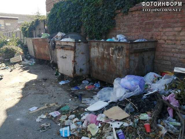 У Кропивницькому купи сміття лежать просто неба