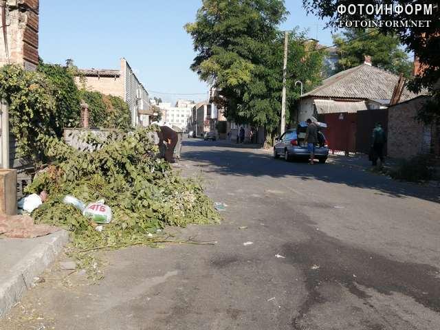 Сміттєві майданчики у Кропивницькому перетворюються на стихійні звалища