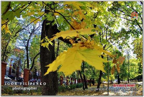 Краса золотої осені у Кропивницькому (фоторепортаж), фото филипенко