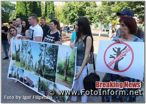 Кропивничани, проти наруги над деревами, фото филипенко, кропивницький