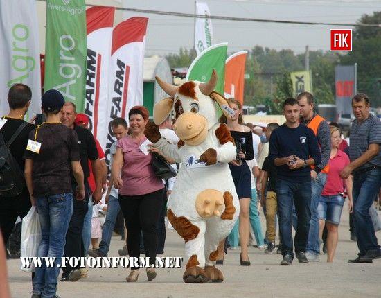 Кропивницький: другий день виставки «AgroExpo-2017» у фотографіях