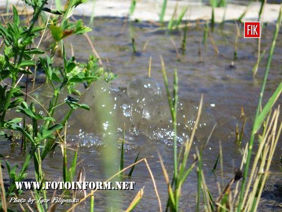 У Кропивницькому тече вода рікою