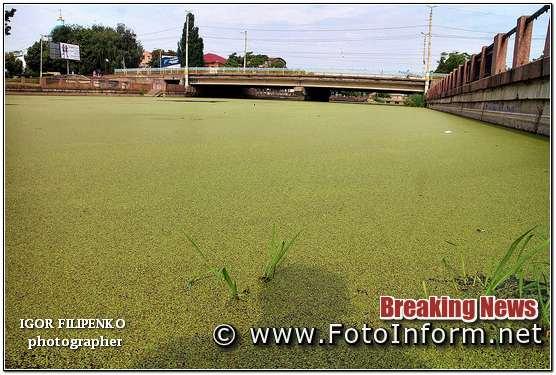 Кропивницькому Інгул зелений, та смердючий, фото филипенко