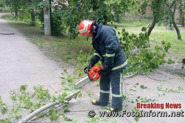 19 травня бійці 13-ї ДПРЧ смт Голованівськ надали допомогу по розпилюванню аварійного дерева, яке загрожувало падінням на території кладовища по вул. Івана Богуслава в райцентрі.