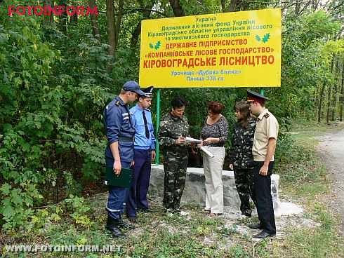 Рейд по лісам Кіровоградщини: порушень не виявлено