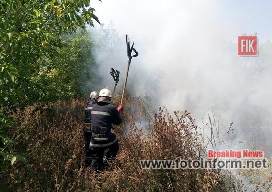 Протягом доби, що минула, пожежно-рятувальні підрозділи Кіровоградської області 10 разів виїздили на гасіння загорянь у екосистемі.
