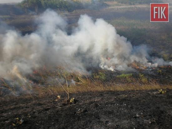 За минулу добу, 28 травня, рятувальники загасили 5 пожеж сухої рослинності та сміття.