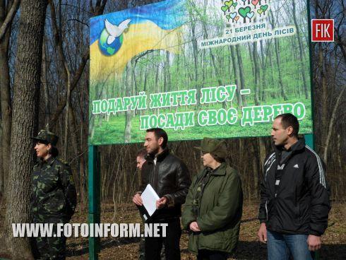Сегодня, 21 марта, в Кировоградской области стартовала юбилейная, десятая Всеукраинская акция «Майбутнє лісу в твоїх руках».