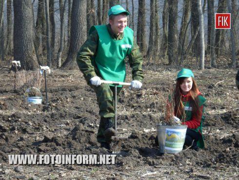 На днях в нашей области стартовала юбилейная, десятая Всеукраинская акция «Майбутнє лісу в твоїх руках».